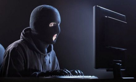 Cyber Crime As Company