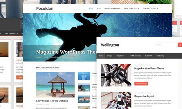 Do Not Change Your WordPress Theme before Reading This